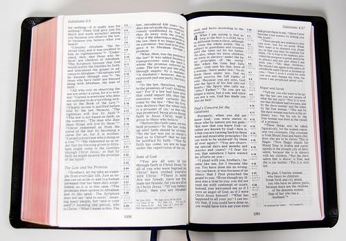 Allan's Bold Print NIV 4