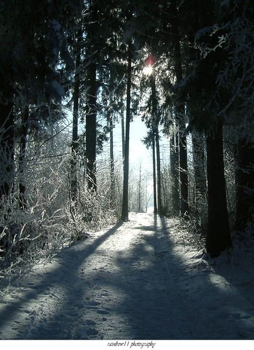 The Path To Light