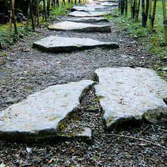 Parc de Maulévrier - Chemin de pierres