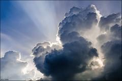 Nebula (dani.Co) Tags: cloud sun sol nikon belgium nube sunray rayosdesol lucisart danico ltytr2 ltytr1 visiongroup flickrenvy danicophoto