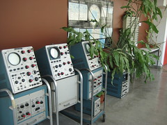 Jungle growing over retired oscilloscopes