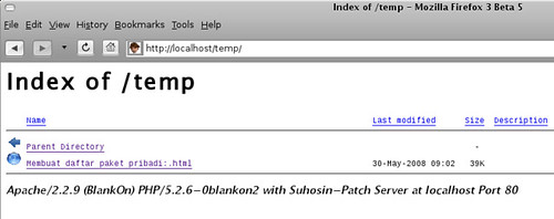 Screenshot-Index of -temp - Mozilla Firefox 3 Beta 5-1