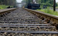 Ties & things (Biking Nikon SFO) Tags: railroad ties vanishingpoint nikon connecticut tracks d200 windsorlocks converging 50mmf14nikkor cbpittenger
