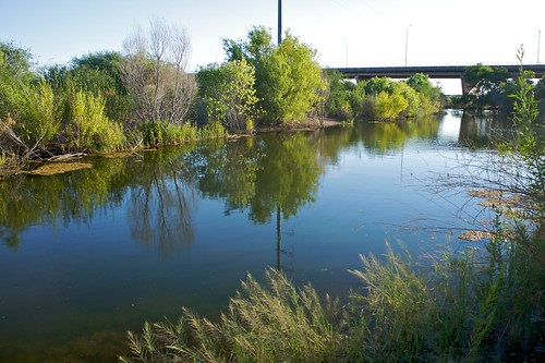 Rio Salado Habitat Restoration Project