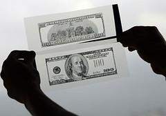 U.S. Banknote Paper Fibers
