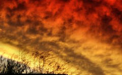 Heaven On Fire Above Sin City (CharlieBrown8989) Tags: blue trees homes sunset red sky orange plants white black green nature weather yellow closeup clouds canon fire yahoo interestingness flickr zoom picasa best explore tele tamron charliebrown8989 climate sustainability corel paintshopproxi