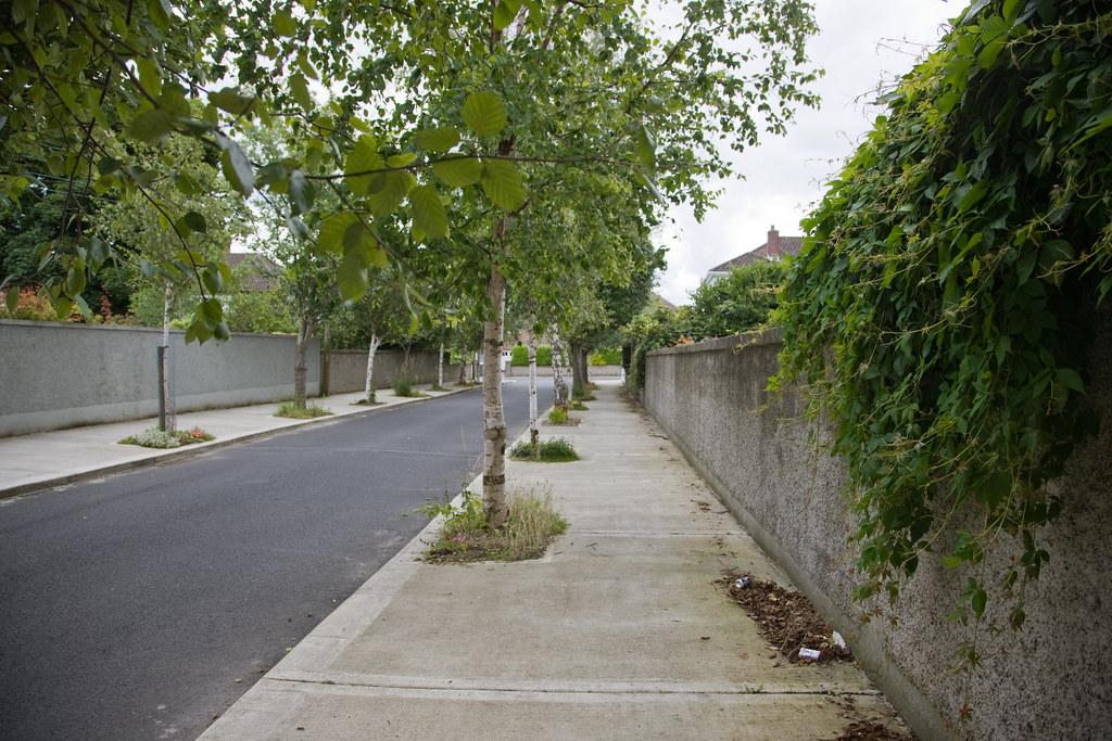 Woodlands Drive - stillorgan