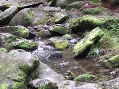 Pool of Water (KAPOWE!) Tags: lorne