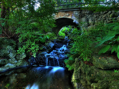 streams (paul bica) Tags: pictures bridge trees plant