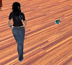 Forum Cartel Hangout August 24 2008 003 (Michael Soji Briggs) Tags: secondlife brann forumhangout