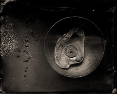 some memories are as precious as water #3 (ambrotype) (heyoka) Tags: stilllife ambrotype wetplate 4x5 scarab oystershell wetplatecollodion drinkingbowl