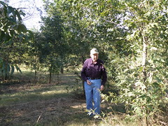 Dad in Pecan Grove