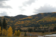 Bootjack Ranch (lightsout40) Tags: colorado aspens pagosasprings bootjack bootjackranch