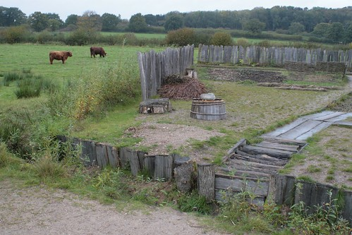Brunnen in Haithabu 19-10-2008