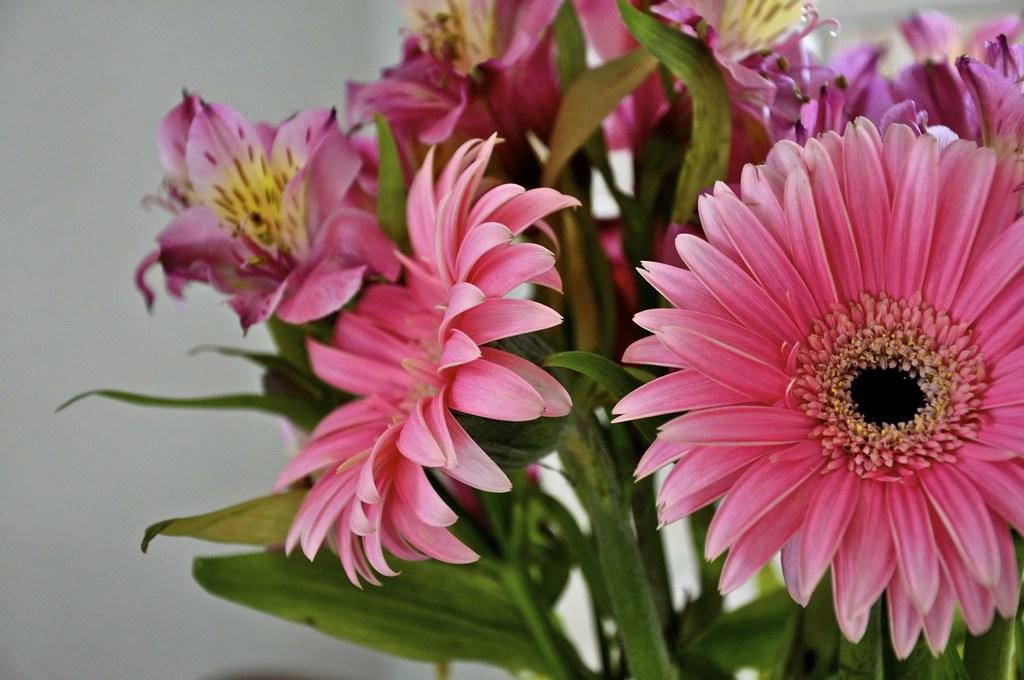 Desk Flowers.