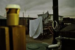 (miss paws) Tags: coffee 35mm xpro 400 fujichrome provia washing houseboats shoreham
