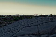Aquí debería haber arena / Once upon a time there was sand... (Nhelios) Tags: paisajes europa andalucia cadiz macros algeciras centenario exteriores campodegibraltar espaa otoo parquedelcentenario
