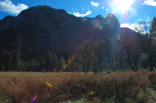 Light Rocks, field, trees, sunlight, lens flare, Yosemite National Park, California, USA by Wonderlane