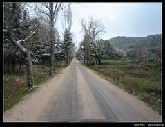 Pista de la Fresnedilla (nXpected) Tags: forest sierra cazorla fresnedilla paisajea