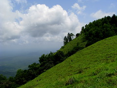 Green !!! Green !!! Green !!! (Jay fotografia) Tags: sky india tourism nature clouds earth kerala monsoon greenery ponmudi godsowncountry thiruvananthapuram jayasankarmadhavadas