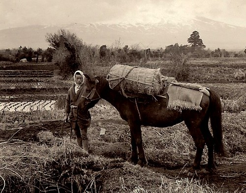 A FAMER AND HIS HORSE IN OLD JAPAN -- In The Shadow of Cloud-Shrouded Mt. Fuji