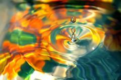 goccia colorata (Matteo Maggini) Tags: macro particolari generiche