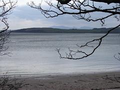 Largs, Cumbrae & Arran (W F B) Tags: uk sea tree river scotland clyde nikon escocia arran millport schottland ayrshire largs ecosse scozia 苏格兰 шотландия