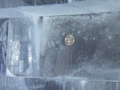 500 Yen Stuck on the Wall (Hirata-cho) Tags: tokyo icebar roppongi absolut