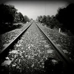 . (Ilaria ) Tags: blackandwhite bw 6x6 holga kodak tmax ombra toycamera 100 ferrara treno biancoenero prospettiva rotaie kodaktmax100 medioformato autaut toycamerafotografiaanalogicaitalia