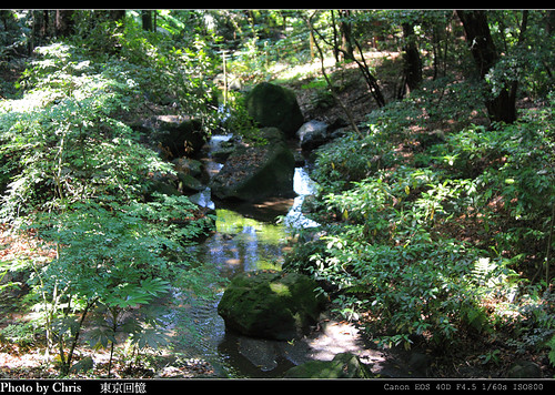 2008_tokyo_0449