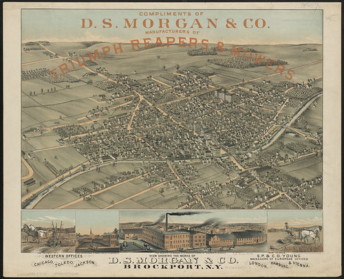 View showing the works of D.S. Morgan & Co., Brockport, N.Y.