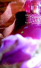)( Fantasy Britney Spears )( (❤ Nαhσσlα ❤) Tags: canon perfume spears fantasy britney fragrance s5 tamim nahoola