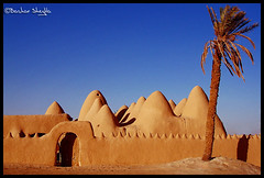 The Oldest mosque in the African Desert ! (Bashar Shglila) Tags: world old sahara photography gallery desert photos top mosque best palm most worlds popular libya masjid libye  ojala masjed libyen   lbia   libi    ateeq ojla bentaher  awjilah   awjalah    libja lbya liiba livi  mygearandme
