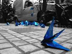 Origamis (Evandro Arruda) Tags: festival azul cutout origami dof liberdade sampa chão festa musictomyeyes h9 blackandwhiteandcolor tanabatamatsuri scoreme flickrscorer diamondheart 1a10brasil globalvillage2 heartawards críticafotográfica visãofotográfica flickrbr flickrroseawards flickrrankme goldenglobe1awards oléquebonito  positiveandnegative evandromartins vigosteiefotografei flickrballoonaward orkutflickrbr iqimagequality partialblackandwhitegroup lib1207 30ºfestivaldasestrelas