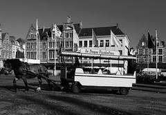 Markt, Bruges (John D McDonald) Tags: markt horse buildings architecture bruges brugge belgium flanders westflanders westvlaanderen geotagged horsephotography