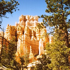 Bryce Canyon Nationalpark, Utah, USA (Batikart ... handicapped ... sorry for no comments) Tags: travel blue red vacation sky orange usa sun white mountain holiday plant mountains tree slr nature rock america square landscape geotagged outdoors utah nationalpark spring ut sandstone day hiking urlaub natur amphitheatre structures peak olympus scan erosion formation textures canyonlands scanned hoodoo layers 1992 geology brycecanyon amerika 2008 landschaft sedimentary baum wandern nationalmonument vacanze 2012 frhling southwestusa brycecanyonnationalpark geologie frhjahr coloradoplateau gipfel upanddown backandforth 100faves 50faves 200faves viewonblack platinumphoto colorphotoaward sedimente batikart platinumheartaward