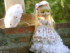 Pullip Paja (Lotus) - Laces & Umbrella 1 (Nekounette) Tags: white umbrella doll lotus sweet lace pullip paja marieantoinette rococo junplanning