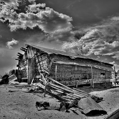 If this barn could speak (caddymob) Tags: wood blackandwhite bw abandoned neglect perfect ruin dry forgotten age dreams era forsaken desolate barren deserted timeless dilapidated forlorned bereft coyotebuttes devoid vertorama