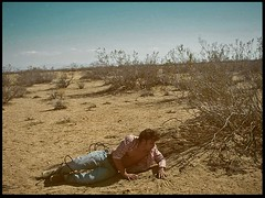 Tony (andiebottrell) Tags: fight blood desert mojave western
