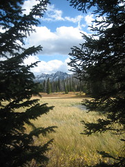Moutains and Meadows Photo