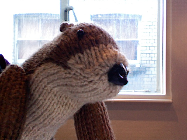 The first knitted otter