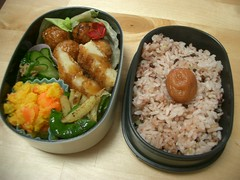 Patch of sunshine bento (skamegu) Tags: food vegetables pumpkin rice carrot bento japanesefood veggie      bentos