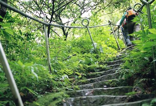 你拍攝的 12上孝子山步道前的步道。