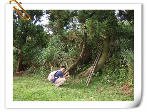 唐妮可☆吃喝玩樂過生活 拍攝的 200810_擎天岡十年約定__02。