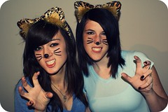"""CASSIE, WE'RE FREAKING CATS!!!"" (Amanda / Bock) Tags: party cats amanda halloween cat costume kitty dressup whiskers cassie whisker cateyes halloweenparty kittys kittycats cateye kittycat amandaandcassie"