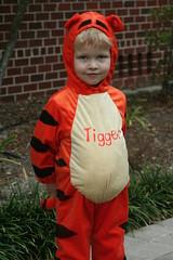 Tigger aka Noah
