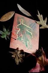 Leaf Rubbing Card