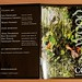 CD-Cover Celarda - Booklet