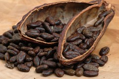 Roasted Cacao Beans (zert.rohstoffe_2008) Tags: beans pod chocolate cocoa roasted cacao antioxidants bioflavonoids