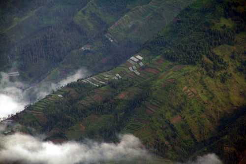 Anbau auf den Ausläufern des gegenüberliegenden Merbabus